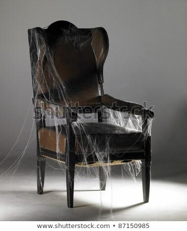 Bruin vleugel stoel studio fotografie oude Stockfoto © prill