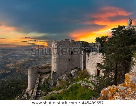 Zamek powrót wody drzewo krajobraz Zdjęcia stock © ruzanna