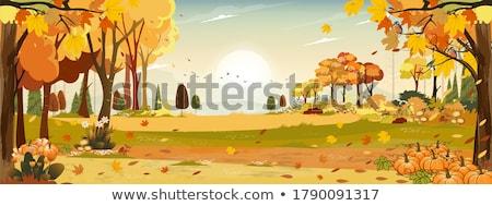altın · ağaç · sonbahar · siluet · yol · arka · plan - stok fotoğraf © dagadu