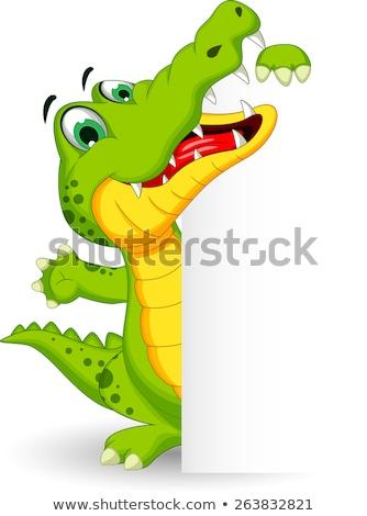 Krokodyla projektu piękna podpisania graficzne Zdjęcia stock © dagadu