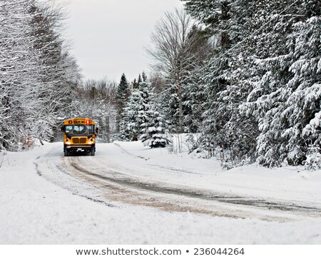 Winter rural scene Stock photo © zzve