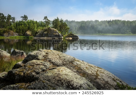 Landscape of rock and forest in Finland stock photo © tainasohlman