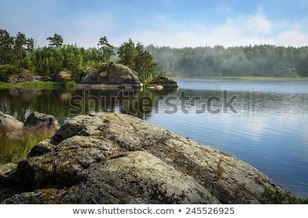 paisaje · rock · forestales · Finlandia · primavera · madera - foto stock © tainasohlman
