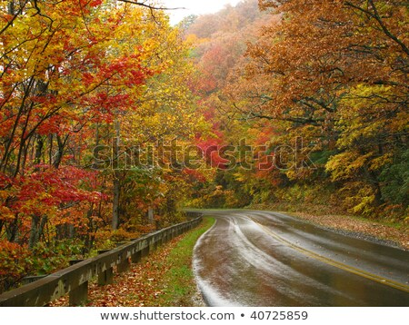 Blue Ridge Parkway in the Fall after a Rain Stock photo © alex_grichenko