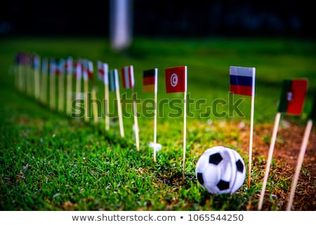 Soccer ball with Columbia flag on pitch Stock photo © stevanovicigor
