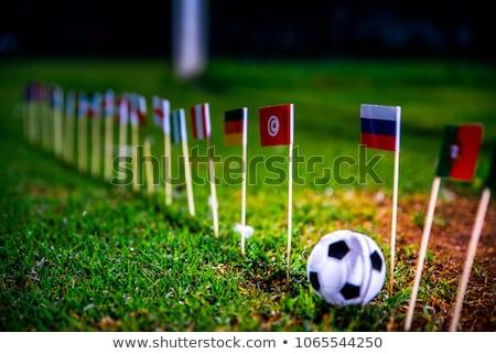 サッカーボール · フラグ · ピッチ · サッカー · 世界 · トーナメント - ストックフォト © stevanovicigor