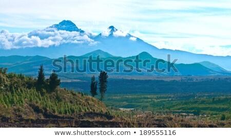 Ekvador doğa rezerv gün batımı manzara dağ Stok fotoğraf © xura
