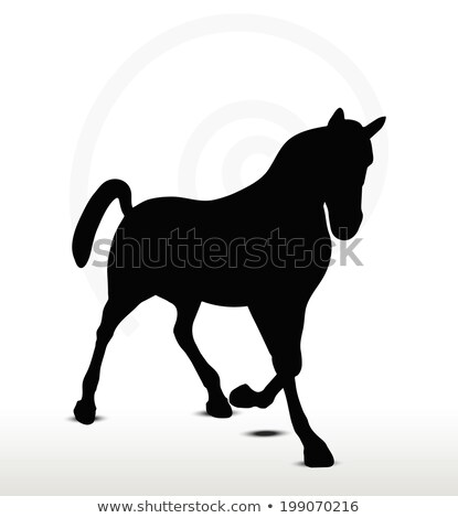 horse silhouette in prancing position stock photo © istanbul2009