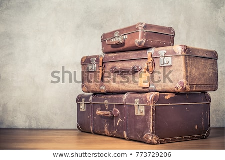 Vintage кожа чемодан ходьбе Stick Hat Сток-фото © alexandre17