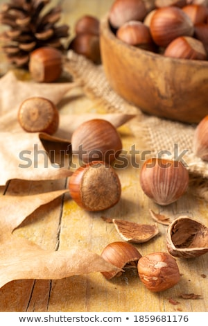 Natural autumn objects at burlap Stock photo © olandsfokus