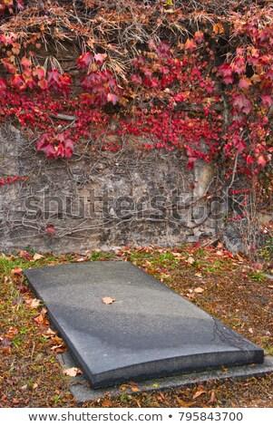 Burial vault Stock photo © BigKnell