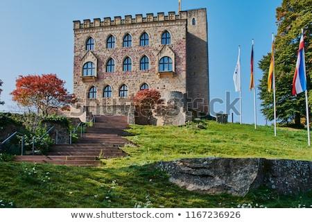 hambach castle stock photo © prill