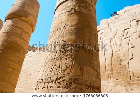 храма · Луксор · Египет · текстуры · здании · Palm - Сток-фото © mikko
