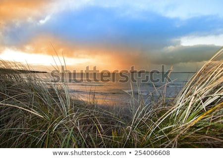 sunset view from the sand dunes of Beal Stock photo © morrbyte