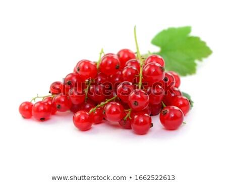 красный · смородина · белый · продовольствие · зеленый - Сток-фото © peter_zijlstra