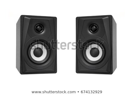 Acoustic system isolated Stock photo © ozaiachin