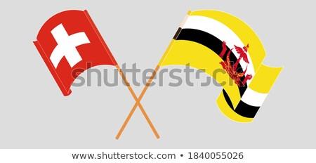 Швейцария Бруней флагами головоломки изолированный белый Сток-фото © Istanbul2009