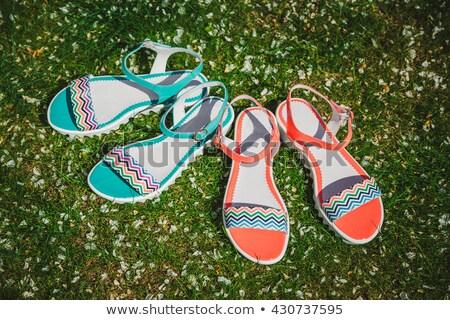 Nuevos sandalias aislado blanco mujer moda Foto stock © GeniusKp