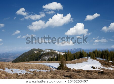 Snowfield in the mountains Stock photo © Kotenko