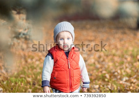 blue-eyed blond sits with the son in the park in autumn 2 Stock photo © Paha_L
