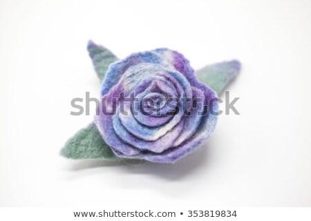 Mooie Blauw steeg bloem wol witte Stockfoto © mcherevan
