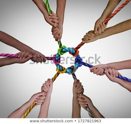 Húz együtt közösség együttműködés csoport kötelek Stock fotó © Lightsource