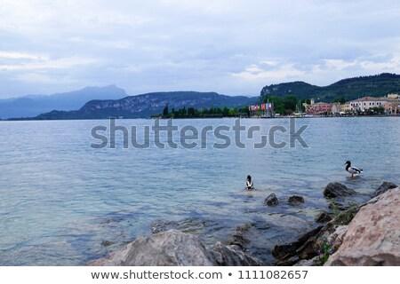 Bordolino and Lake Garda Stock photo © LianeM