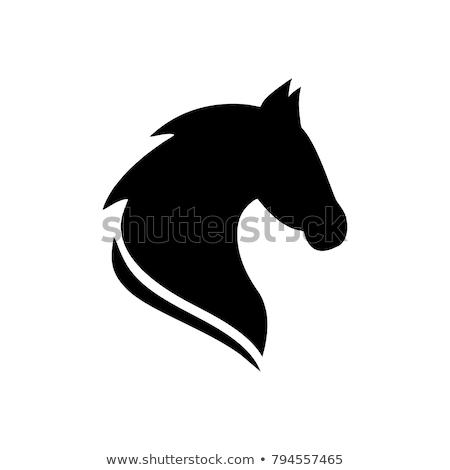 Caballo cabeza mascota estrellas icono rojo Foto stock © HunterX