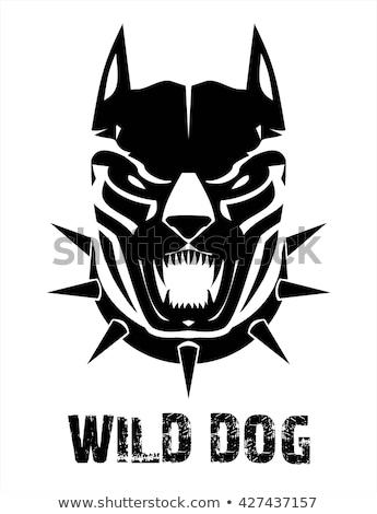fekete · kutya · sziluett · vektor · kutyaféle · állat - stock fotó © hunterx