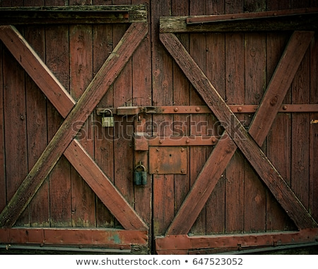 Old wooden gate background Stock photo © Digifoodstock