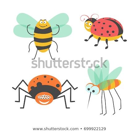 cute mosquito cartoon stock photo © jawa123