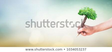 Student or writer on the nature concept Stock photo © artfotodima