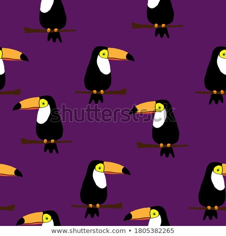 seamless pattern with cute jungle parrot toucan on purple background stock photo © bluelela