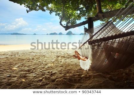 kép · lábak · nő · tengerpart · sétál · divat - stock fotó © deandrobot