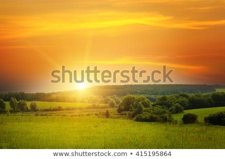 美しい 太陽 曇った 空 雲 日没 ストックフォト © alinamd