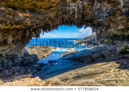 пляж · волны · кенгуру · острове · Южная · Австралия · морем - Сток-фото © dirkr