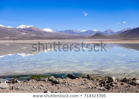Altiplano laguna in sud Lipez reserva, Bolivia Stock photo © daboost