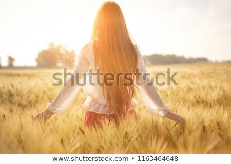 Nina campo de trigo diversión trigo horizonte aventura Foto stock © IS2