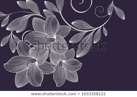 Elegante line modello di fiore design sfondo tessuto Foto d'archivio © SArts