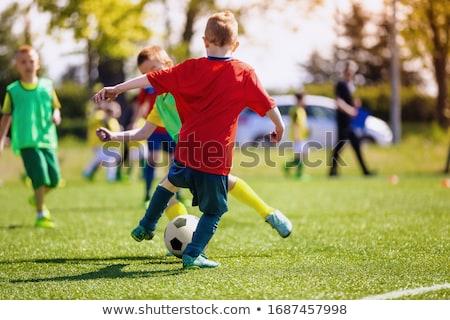 детей · играет · футбола · мало · мальчики · девочек - Сток-фото © bluering