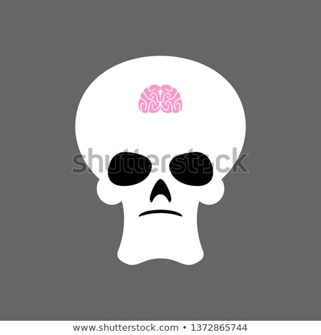 Foto stock: Skull And Small Brain X Ray Of Stupid Little Mind And Skeleton
