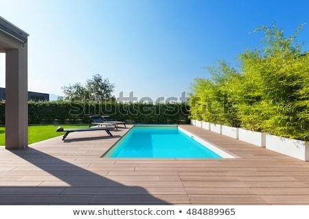 青 スイミングプール 庭園 緑の葉 その他 花 ストックフォト © hamik