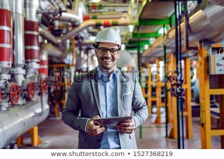 Gray Suit Businessman_complex Stock photo © toyotoyo