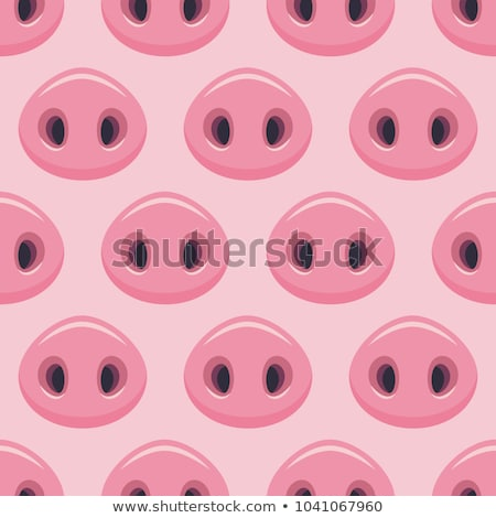 Pig's snout Stock photo © boggy