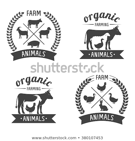 a corn farm with animals stock photo © bluering