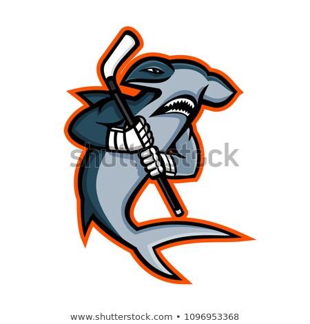 Hokej gracz maskotka ikona ilustracja rekina Zdjęcia stock © patrimonio