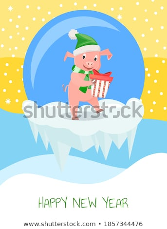 New Year Piglets in Knitwear, Gift Box and Ball Stock photo © robuart