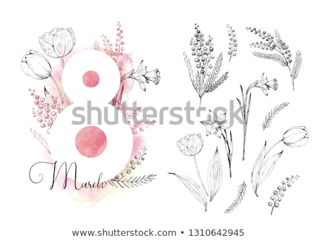 Tulips for 8 March vector greeting card set Stock photo © LisaShu