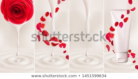 Falling swirl of red rose petals isolated on white background. Vector illustration with beauty roses Stock photo © MarySan