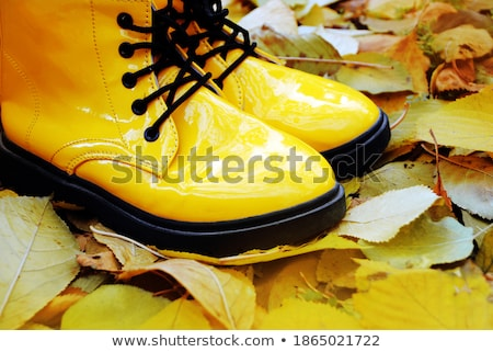 kid legs in rubber boots on maple leaves in autumn Stock photo © dolgachov